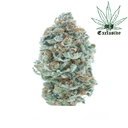buy tangie cannabis weed strain 420 mail order tangie online