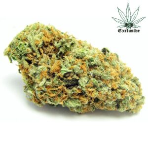 buy green crack strain online